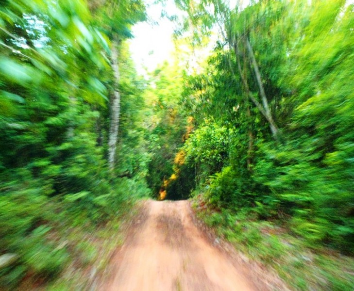 reserva del bosque de Mbaracayú de Paraguay, Reserva de la Biosfera