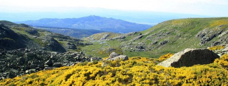 Panoramica sierra meandros y piornos floridos
