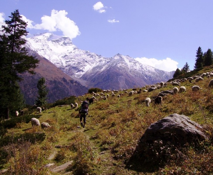 Valle Himalaya India tour trekking alpinismo